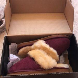 Brand new cabelas slippers
